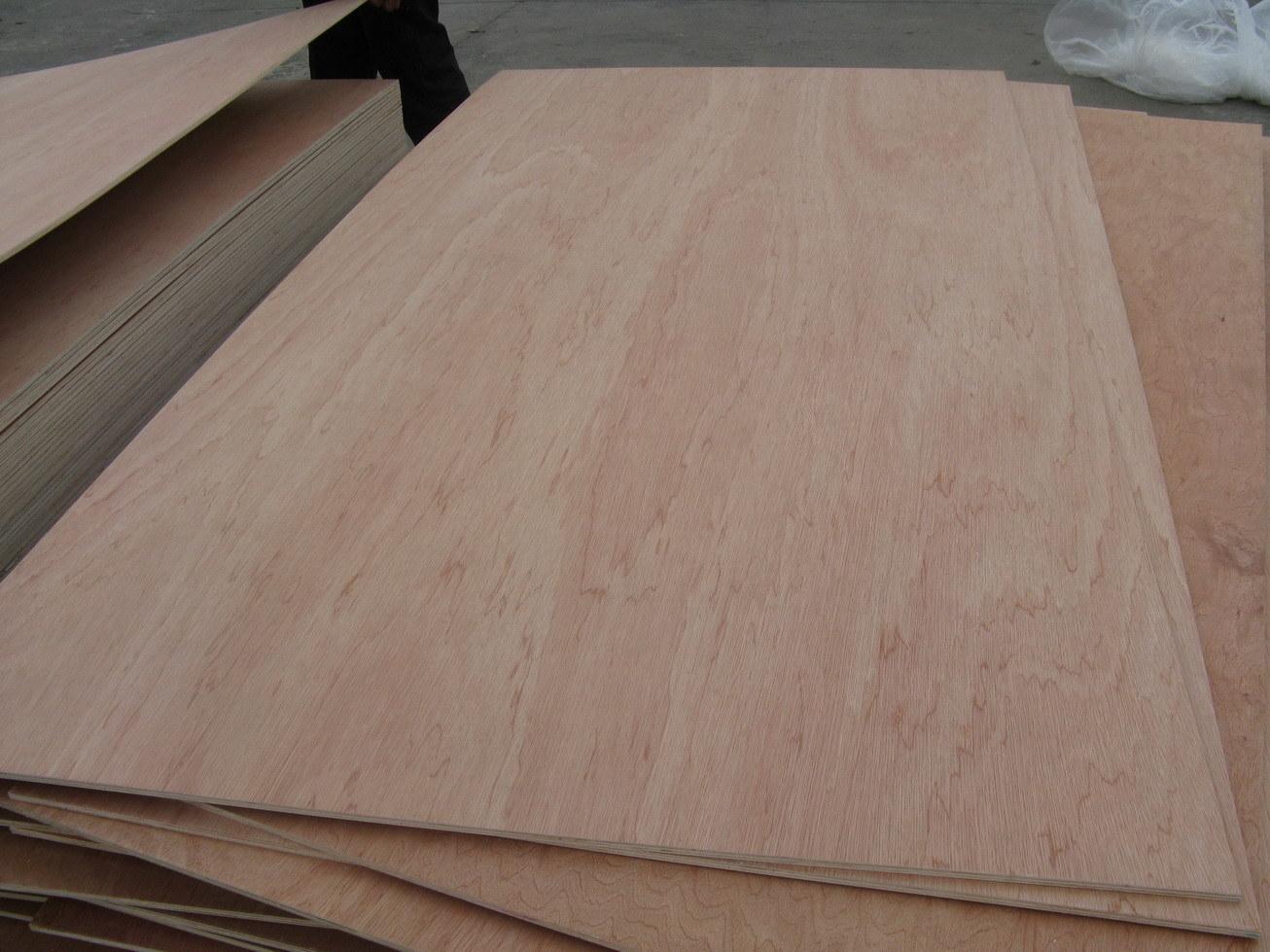 [Hot Item] Factory-Poplar Plywood/Bintangor Plywood/Okoume Plywood/Pine  Plywood and Birch Plywood in 3mm 12mm 15mm 18mm