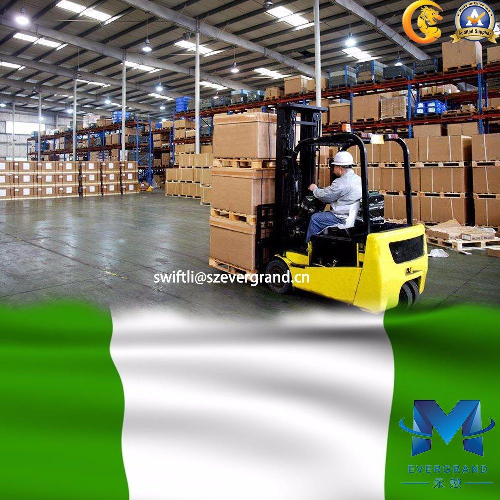 China Top Logistics Service Shipping to Nigeria/Lagos/Apapa/Tincon pictures & photos