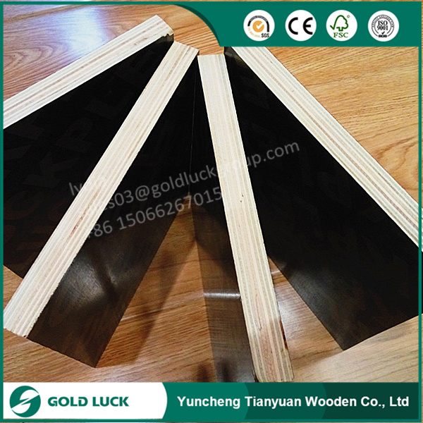 3/4 Film Faced Shuttering Plywood Marine Plywood Prices pictures & photos