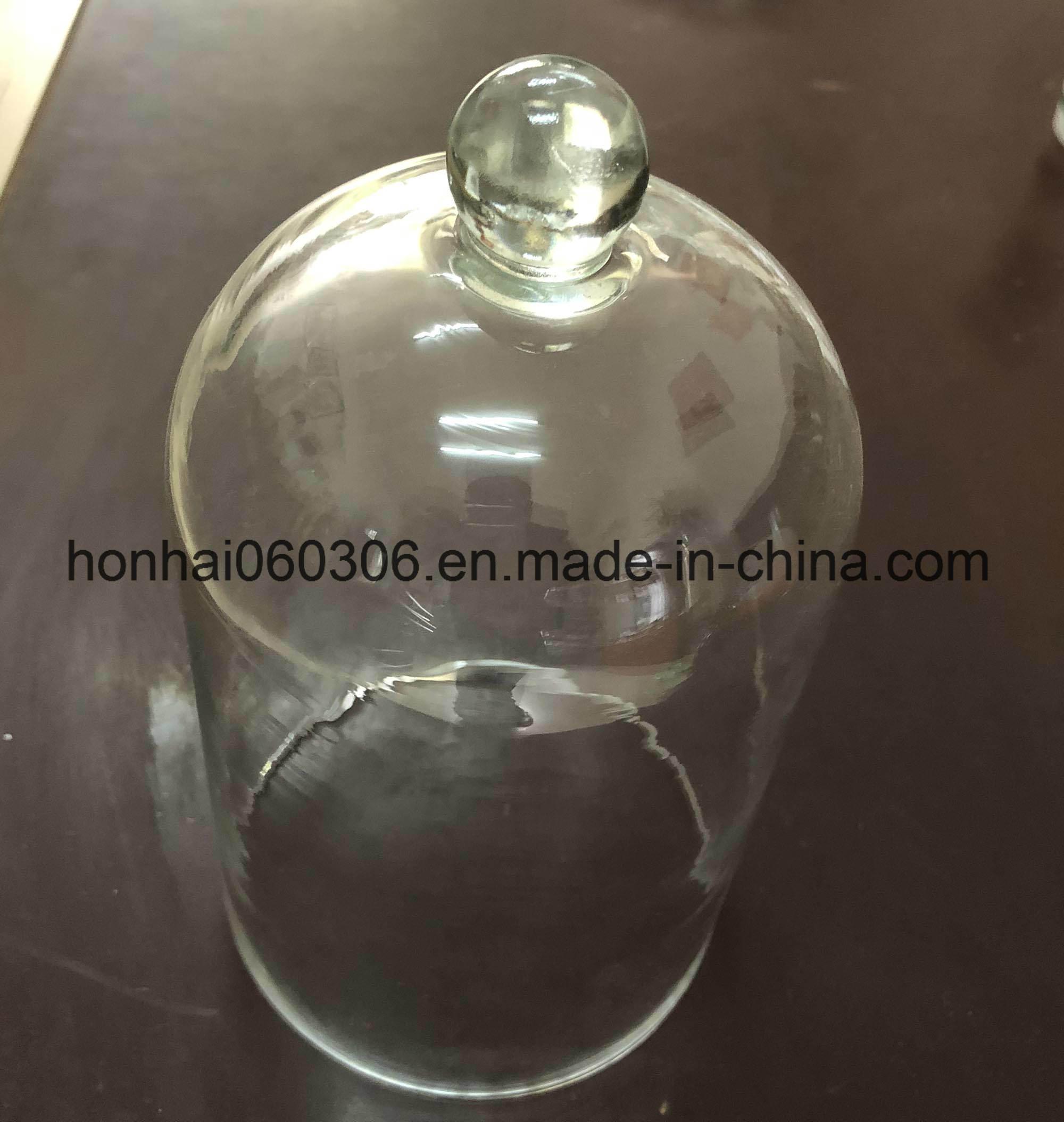 Hot Item Decorative Clear Glass Dome Cloche Bell Succulent Terrariums Air Plant Covers