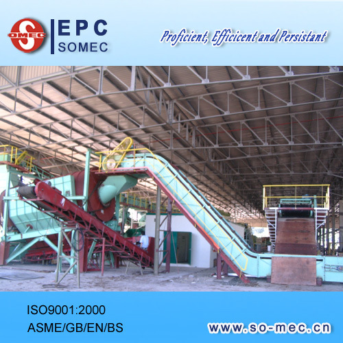 Power Plant Biomass Boiler Feeding System