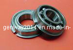 Deep Groove Ball Bearing (6901 ZZNR)