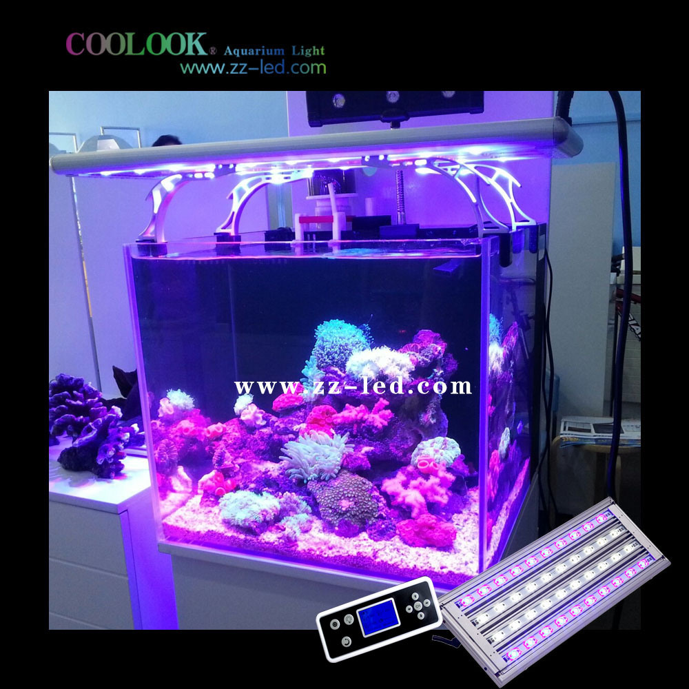 China Ornamental Aquarium Lighting Best For Tropical Fish