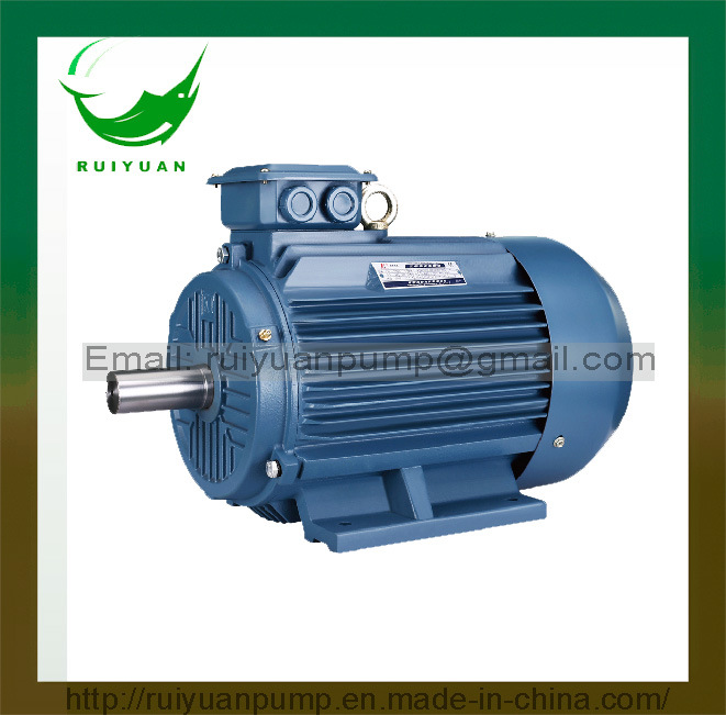 Y2 Series 2 Poles 750W Iron Cast Three-Phase Asychronoous AC Electric Motor