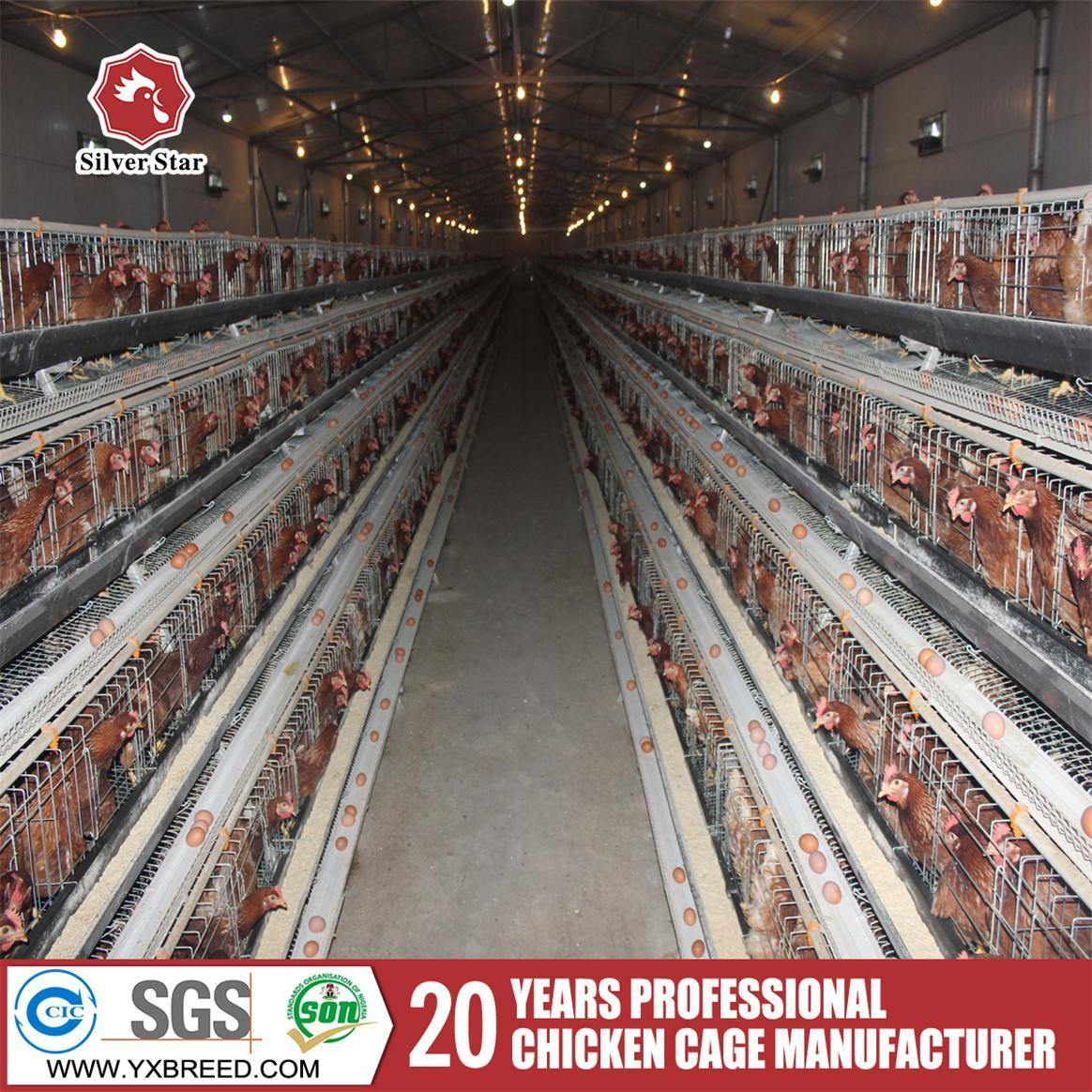 China Battery Cages Poultry House Design For Layers In Kenya Farm