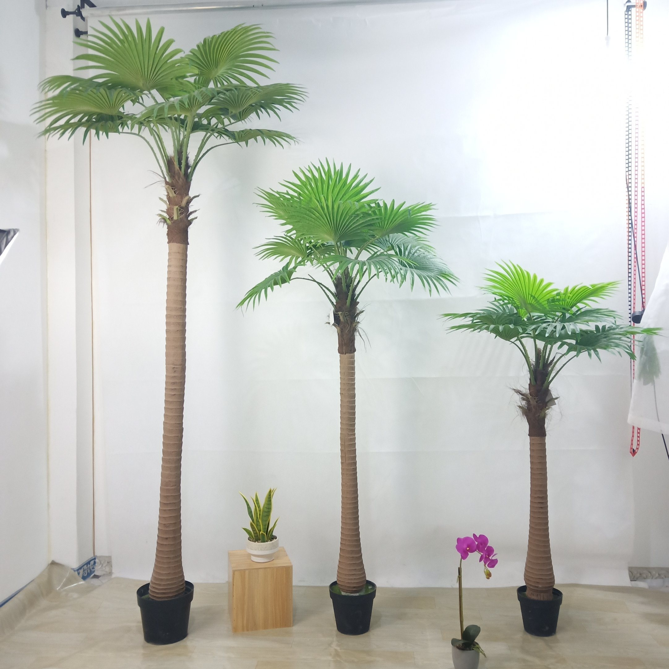 [Hot Item] Factory Outlet Plastic Simulation Decorative Tree Bonsai  Artificial Palm Tree