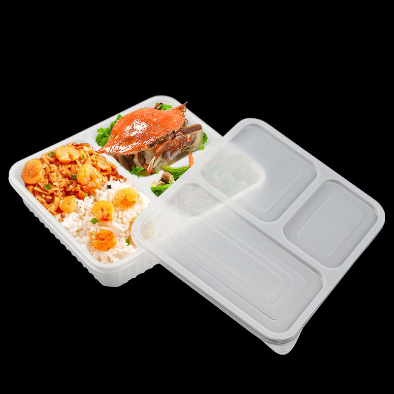 China Biodegradable Plastic Food Packing Box China Packaging Storage Disposable Plastic Container