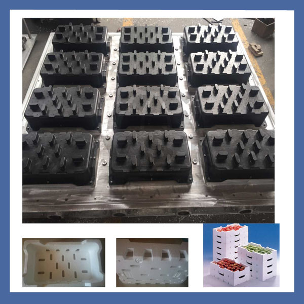 EPS Foam Mould Making for Fruit Boxes