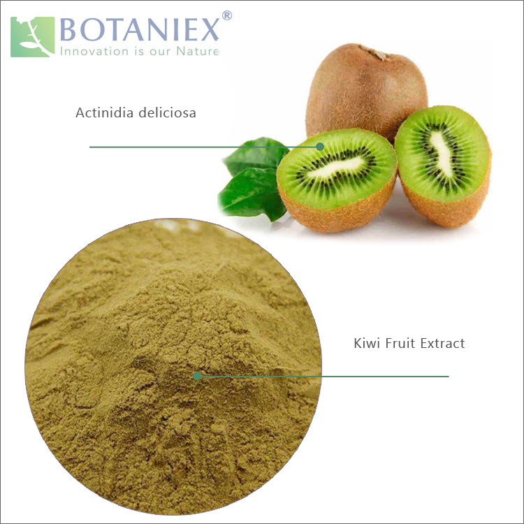 a 2019 Natural Dietry Supplement Actinidia Chinensis Planch, Chinese Gooseberry Extract, Kiwi Fruit Extract Powder 4: 1 pictures & photos