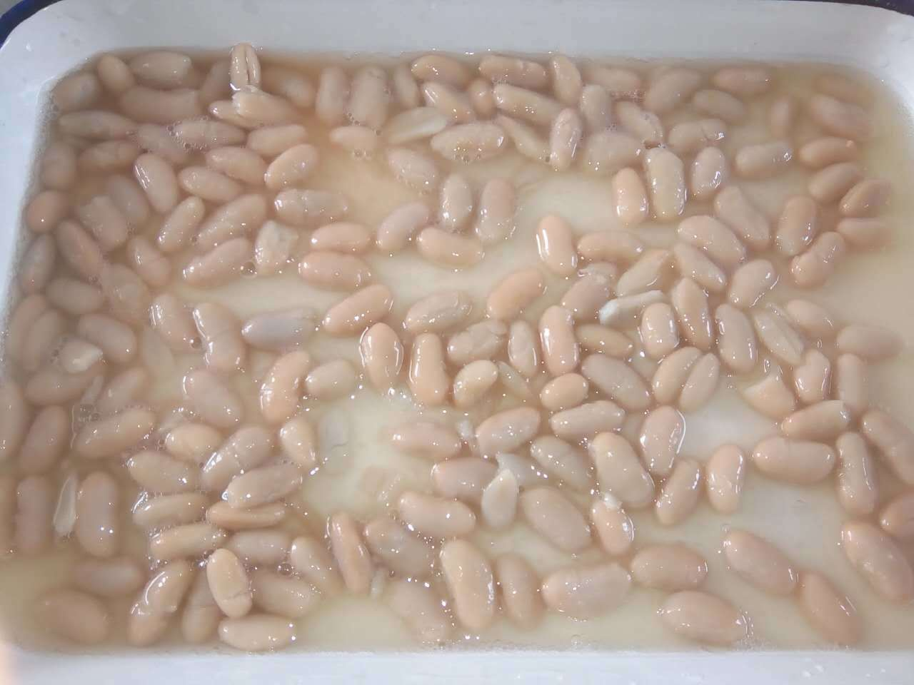 Buy 1 Can Kidney Beans with High Nutrition Inner Side From China