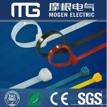 Nylon 66 Fixed Cable Tie with Euro Hole