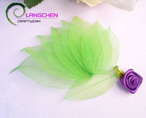 China Apple Green Skeleton Leaves Craft Projects Party