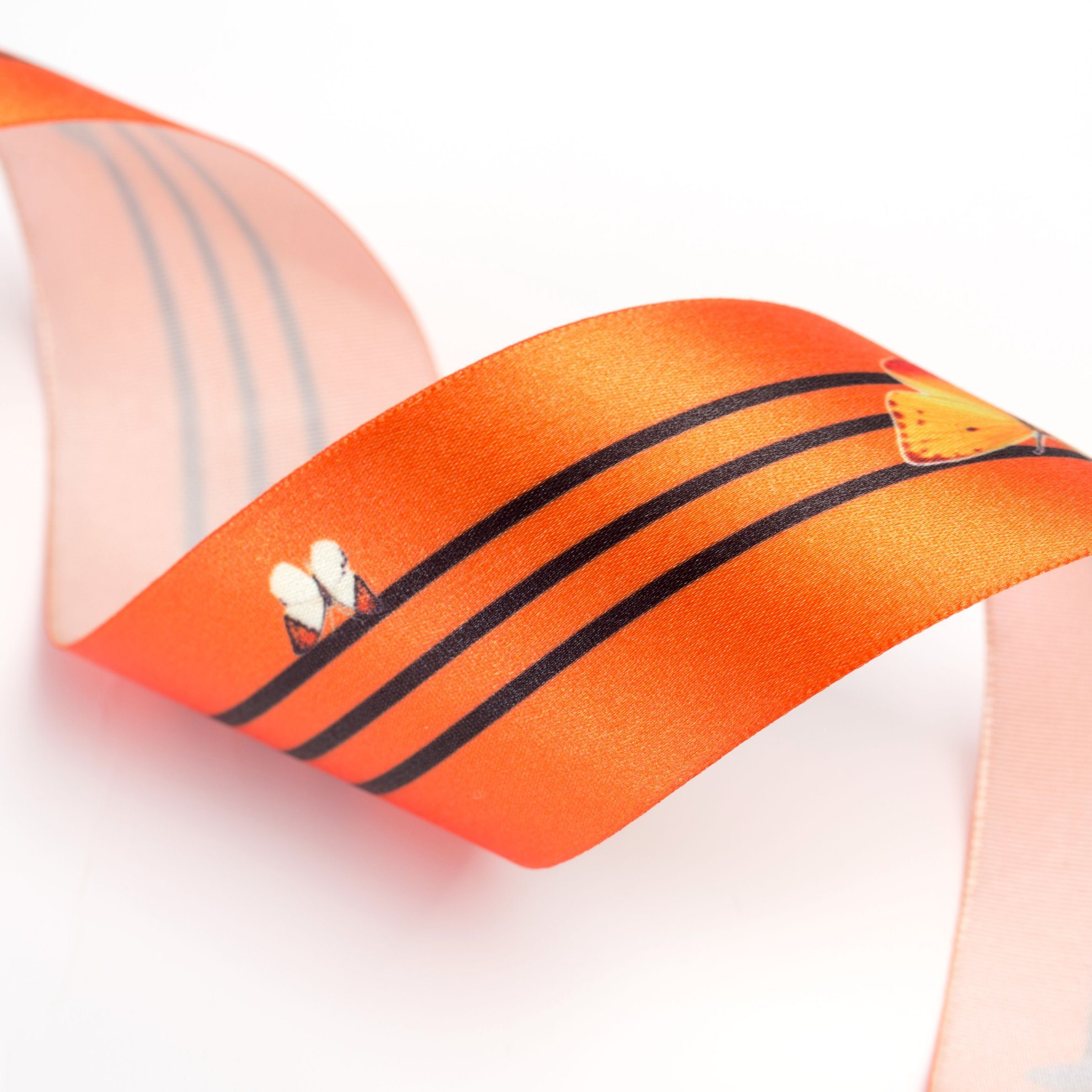 The Butterfly Printed Ribbon for Garments and Bags pictures & photos