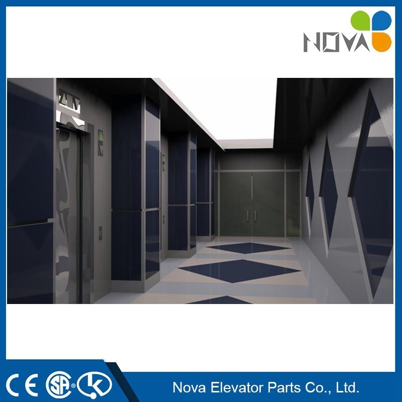 China Kone Elevator Schindler Thyssenkrupp Home Lift