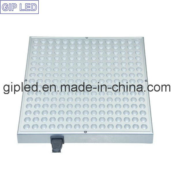 Panel 45W Hydroponic LED Grow Light for Potted Plants pictures & photos