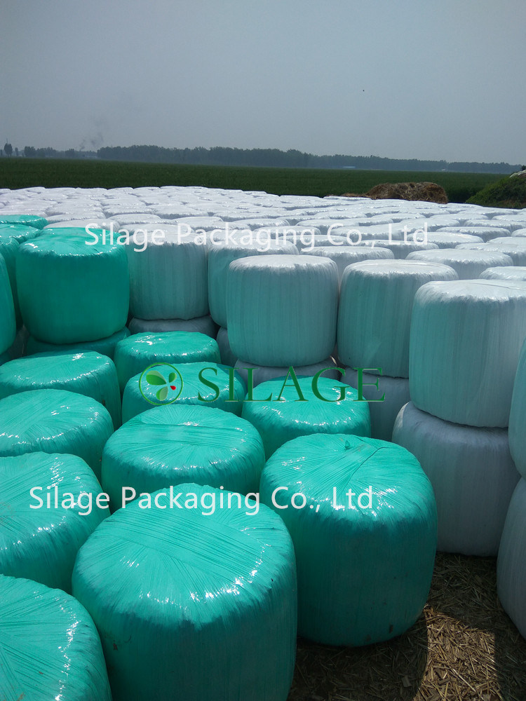 Strong Anti-UV Silage Film 500X1800X25um pictures & photos