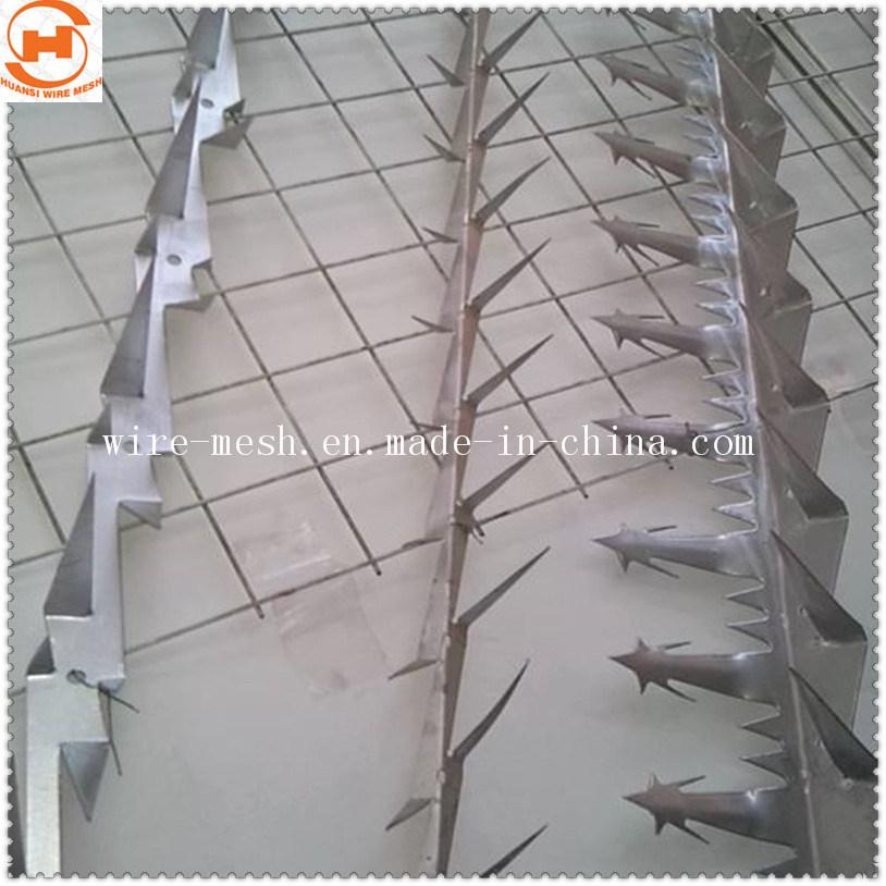 China Anti-Climb Steel Security Wall Spike /Fence Spike Photos
