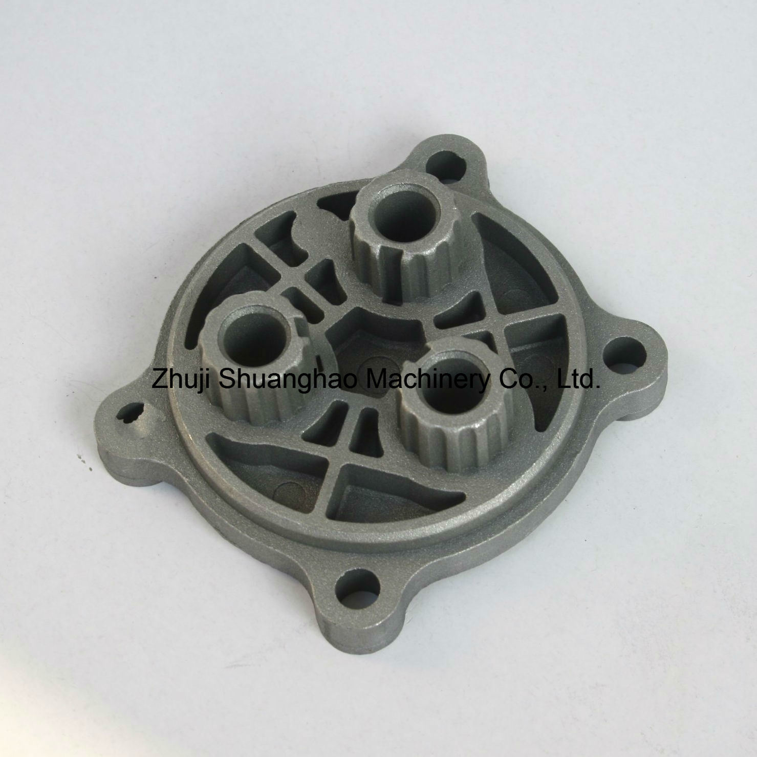 Aluminium Die Casting Parts High Pressure Cleaning Pump Parts pictures & photos