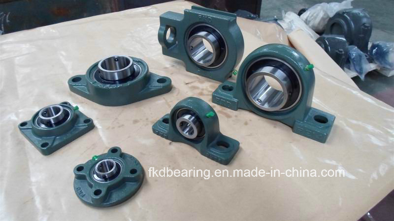 Pillow Block Bearings /Fkd Bearing/Fe Bearing/Hhb Bearing pictures & photos