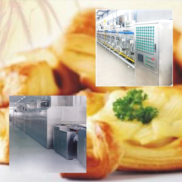 Tunnel Gas Oven for Biscuit Production Line