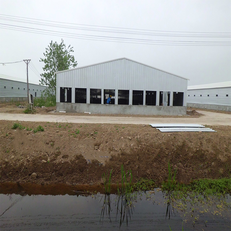 Factory Supply Prefab Light Steel Structure Chicken Farm Poultry House pictures & photos
