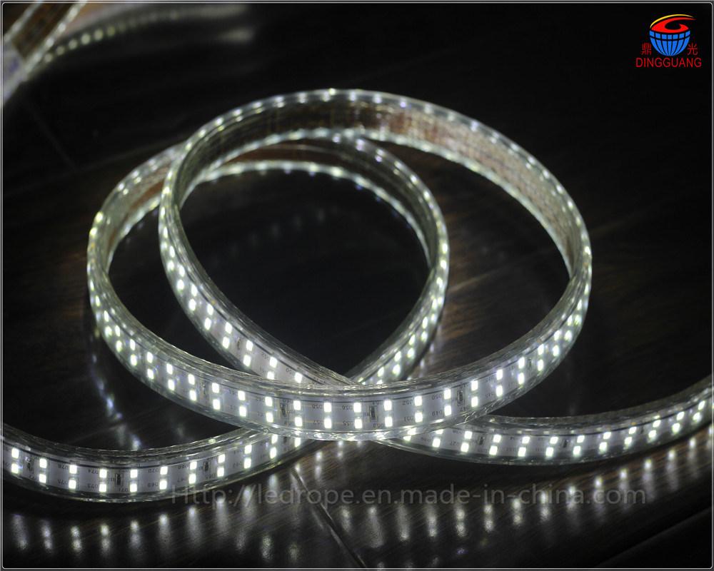 Haute tension de bande de 220V LED CMS 2835