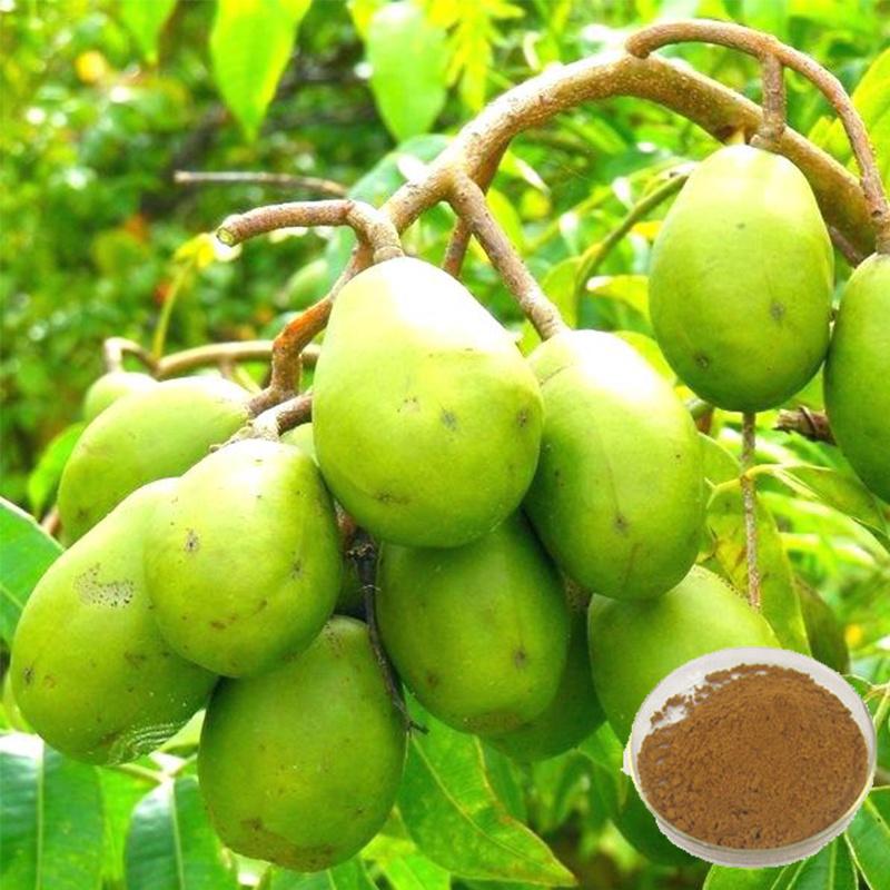 Chine Pygeum africanum extrait de l'écorce – Acheter Pygeum ...