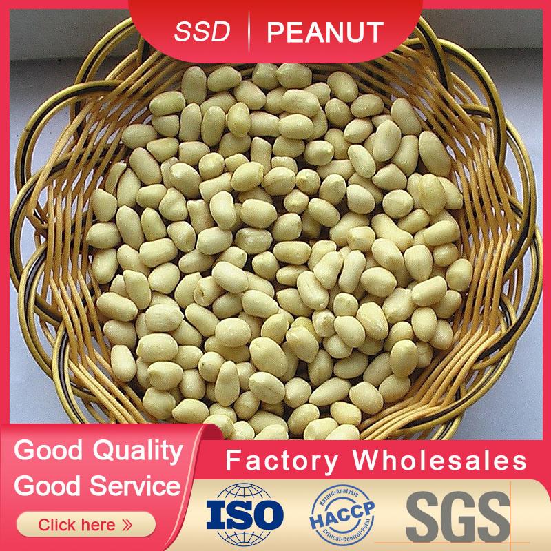 Baisha бланшированные ядра арахиса 2019 нового урожая Forsale 51/61