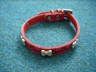 Le collier de Pet (ED-PC-005)