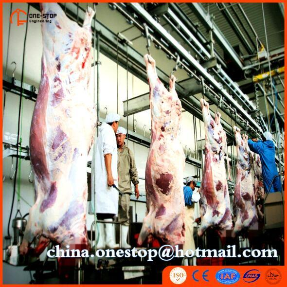Linha equipamento da matança do gado e dos suínos da máquina do matadouro