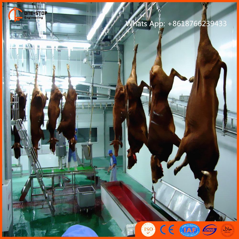 Casella di uccisione di Halal con il mattatoio bovino della pianta del macellaio del Bull del bue della Buffalo della strumentazione del macello della macchina della linea di macello del bestiame