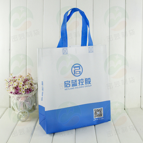 3D Non Woven Fashion Bag con lo PS Coating (MY-062)