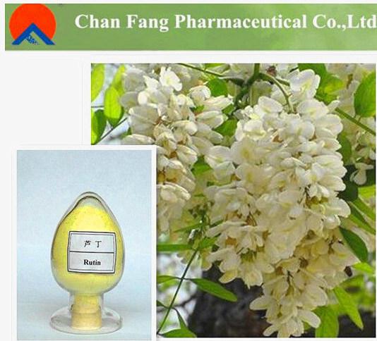 Лучшее качество питания 95%/98% Rutin NF11 от производителя GMP