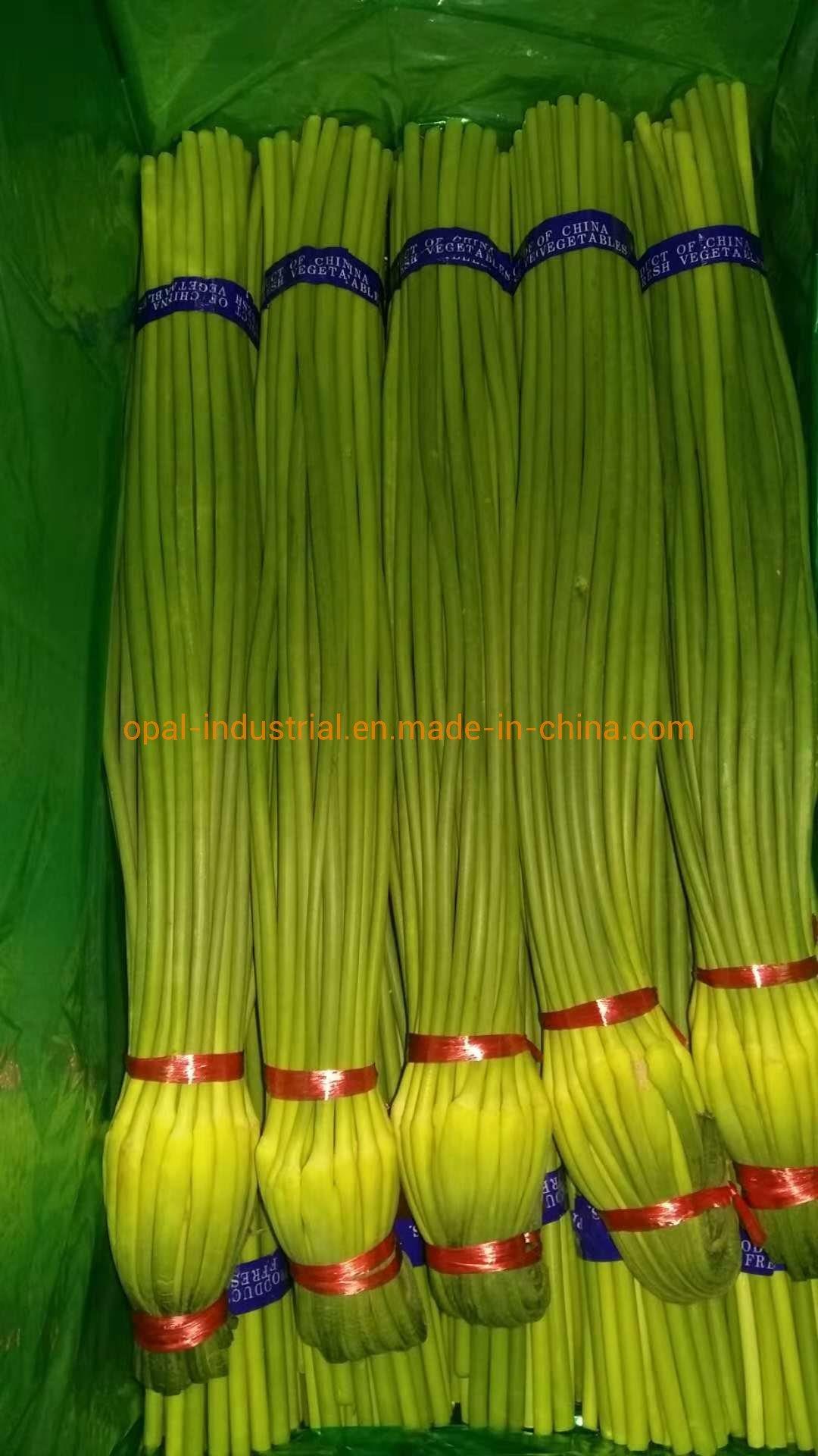 10kg karton dat het Nieuwe Knoflook van de Stam van de Spruit van de Bout van het Knoflook van het Gewas Verse inpakt