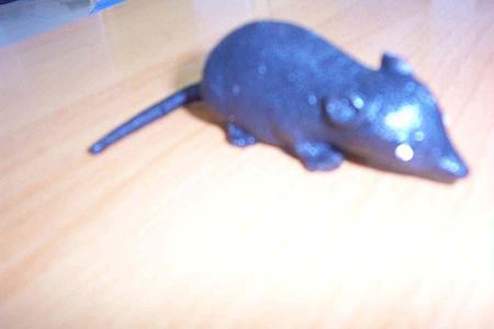 Rata sólidos suave