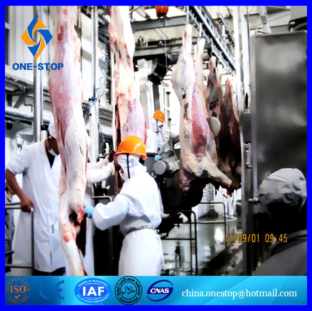 50 Cattles와 100 Sheep Per Hour를 위한 원스톱 Halal Slaughterhouse Equipment