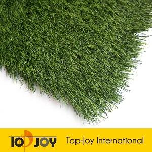 Grande erba esterna del prato inglese di Fack del campo di calcio