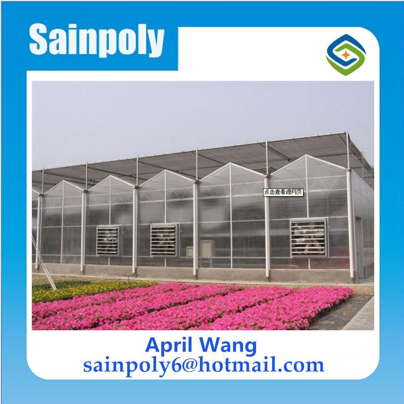 農業のための熱い販売および低価格のパソコンシートの温室