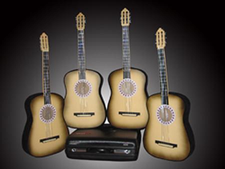 Отображаются 4 гитара