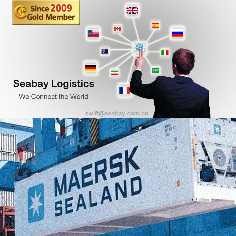 Berufsverschiffen-Service von China zu Europa