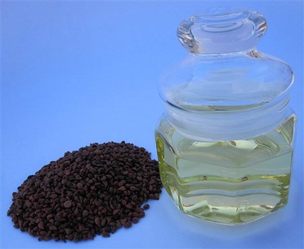 ブドウの種油
