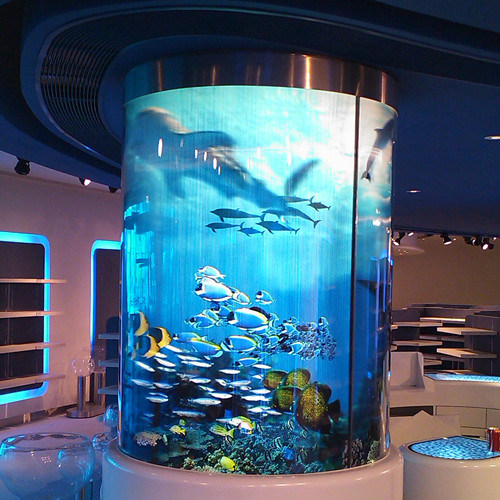 acquario di vetro curvo acquario di vetro curvofornito