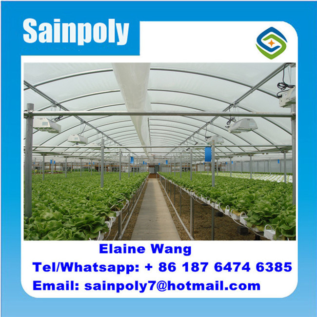 マルチスパンのトンネルのPEのプラスチックフィルムHydroponicシステム農業の温室