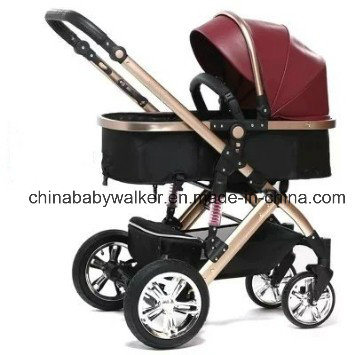 passeggiatore di 885at-8 Extreme Baby