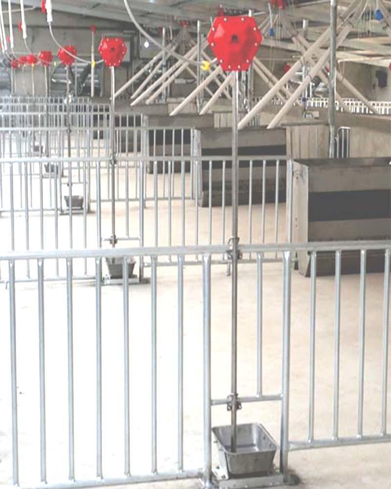 Nuova generazione--Video bevente del livello d'acqua & del piatto per il maiale