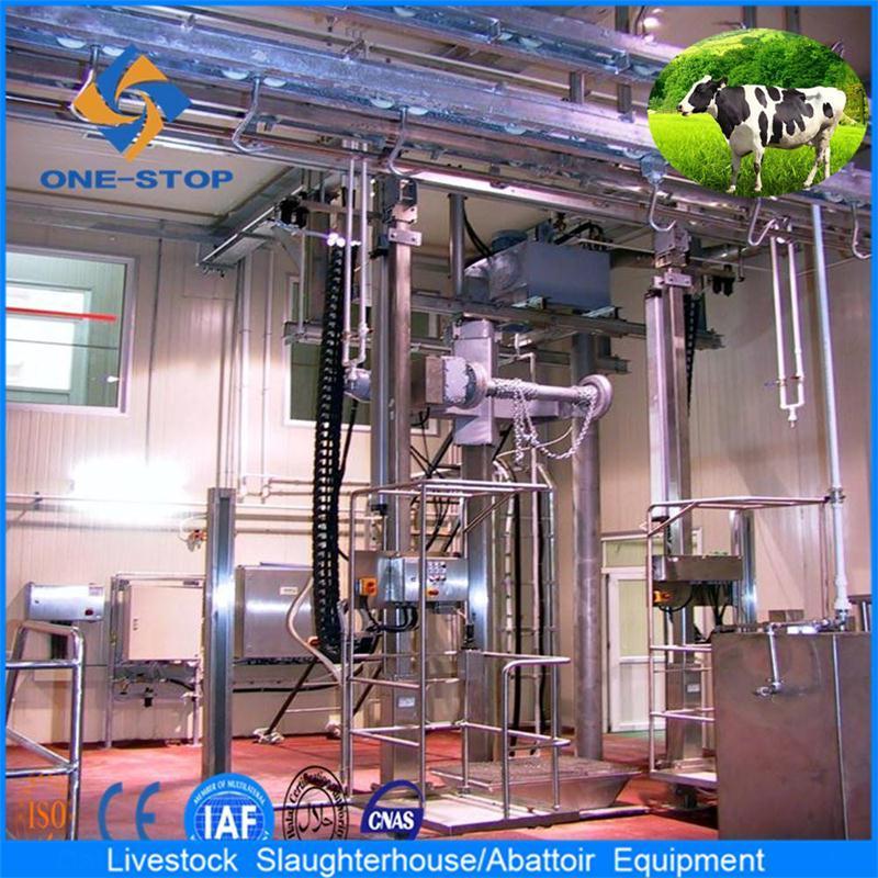 Apparecchiatura di macello della mucca con il processo Onestop