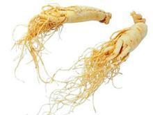 朝鮮人参のエキスの粉、紫外線Ginsenosides 80% 100%の自然な植物のエキス