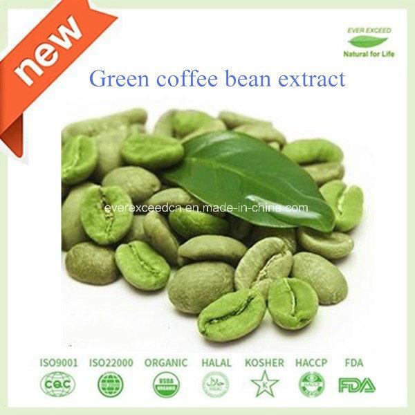 analisi del chicco di caffè verde