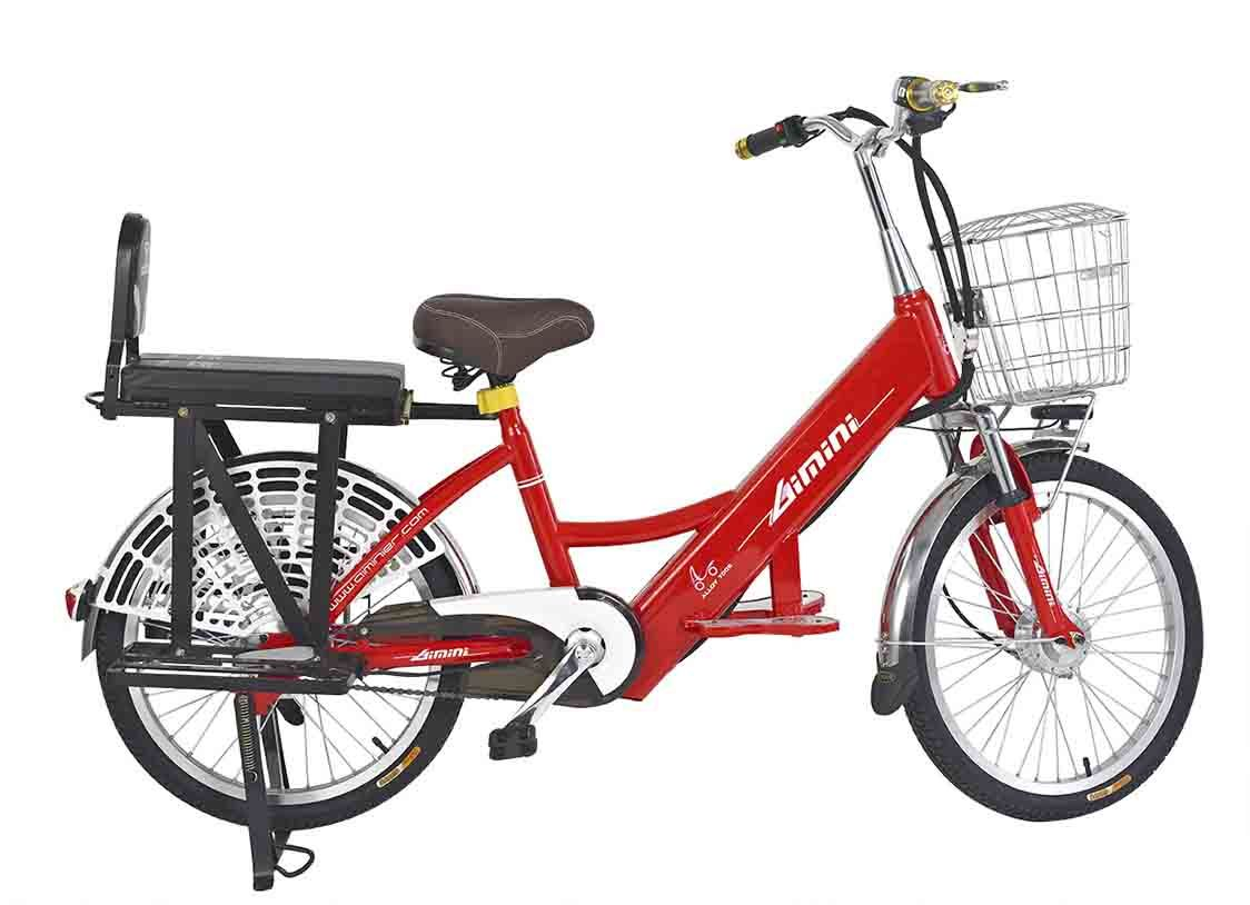 Tdk04-22 (250W 48V 8 Ah Li-ion e-bike)