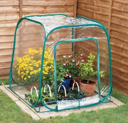 Pop-up Mini serre Fold-Able plante de jardin croître tente ...